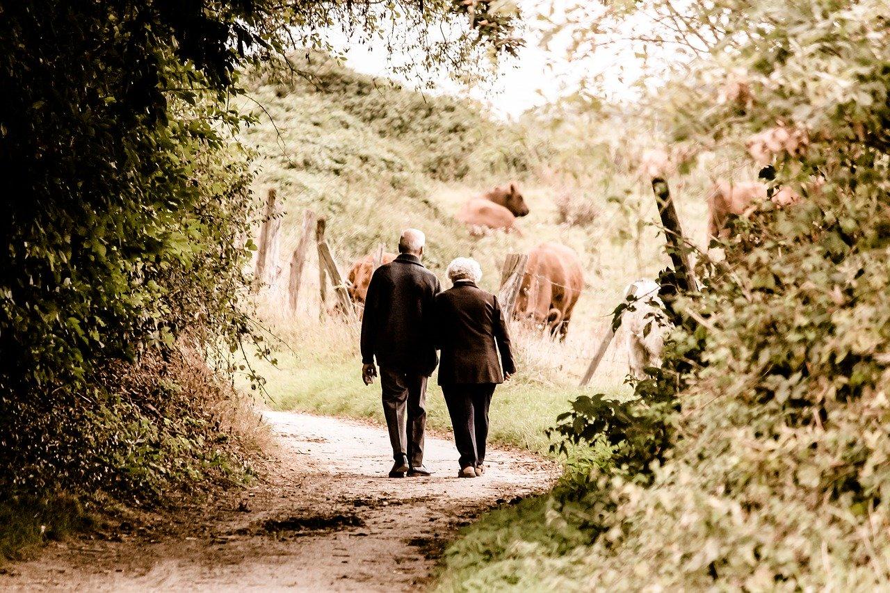 pair, seniors, pensioners